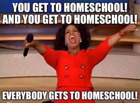7 sanity saving tips for  homeschooling your teenager